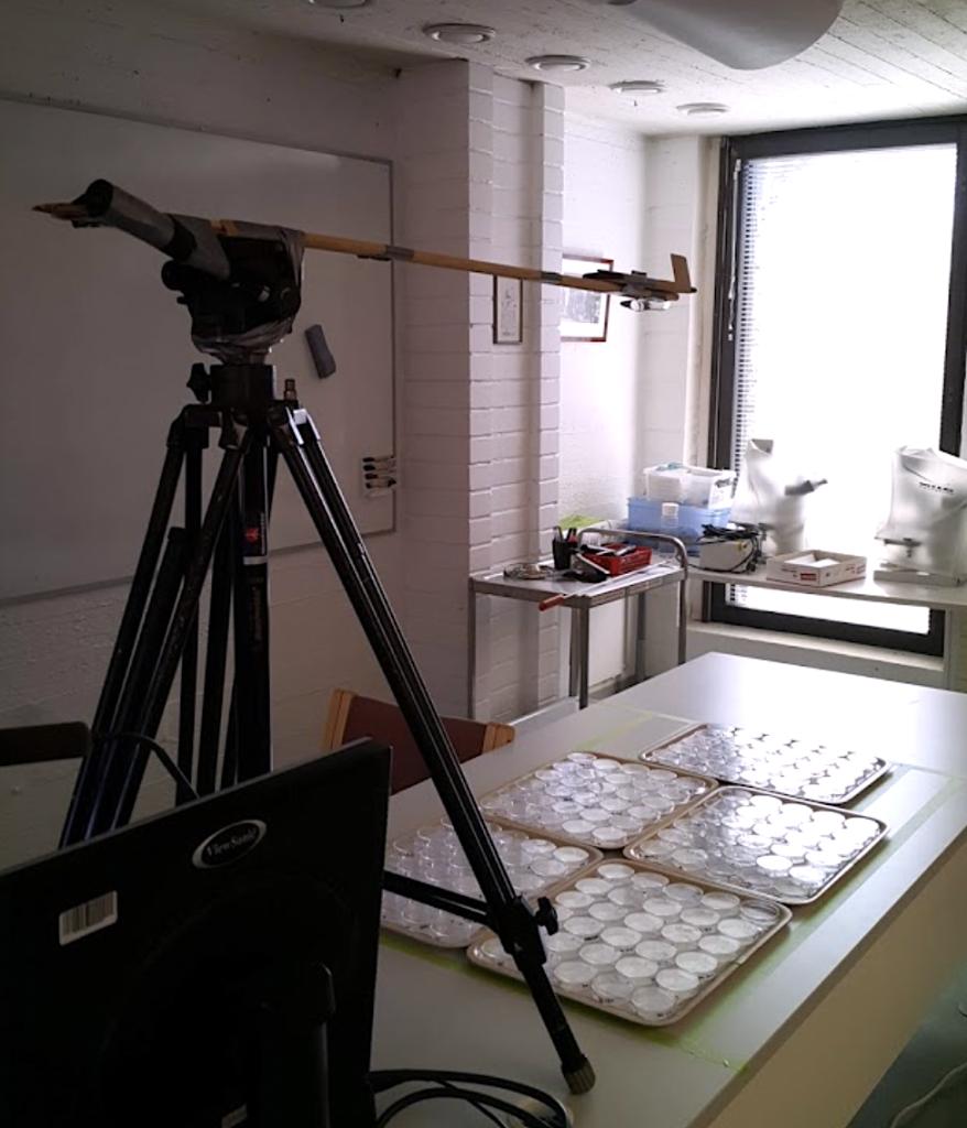 Laboratoriopöydällä tarjottimia, joilla petrimaljoja. Niiden päällä kamera jalustoineen.