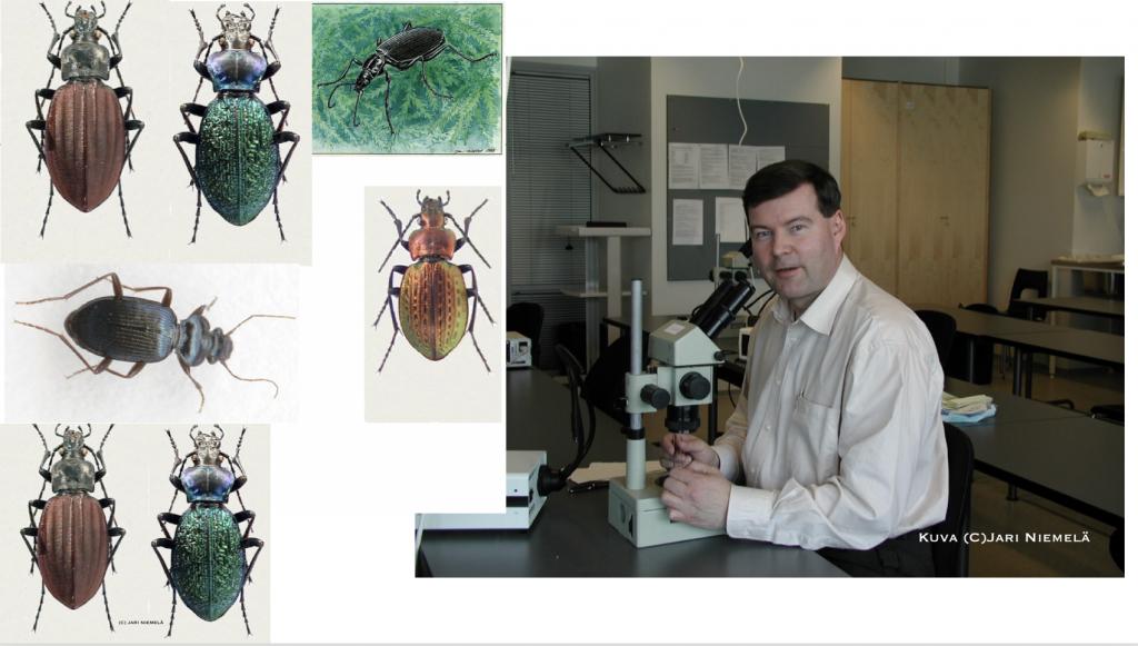 Maakiitäjäisiä sekä professori Niemelä mikroskoopin ääressä.